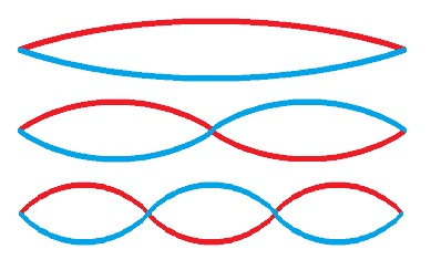 A string vibrating all at once, in halves, and in thirds